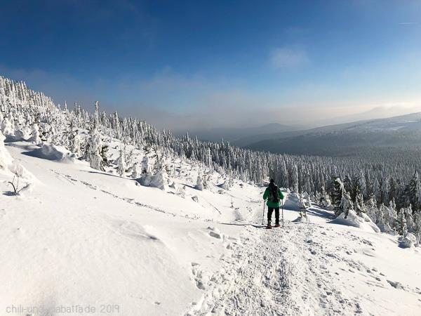 Schneeschuhtour Zwercheck