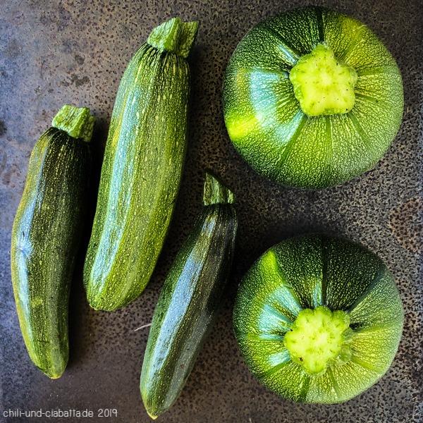 erste Zucchini