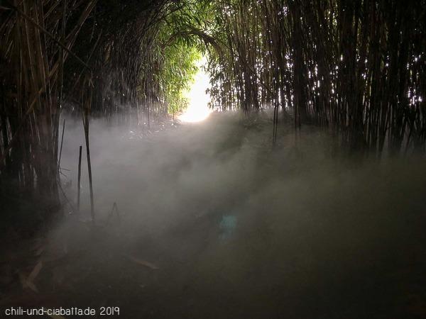 mystische Nebel