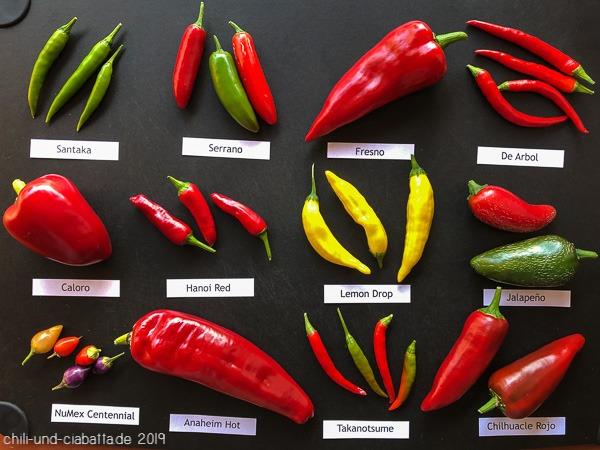 Chilisorten 2019