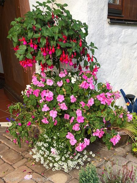Ende Sommerbepflanzung