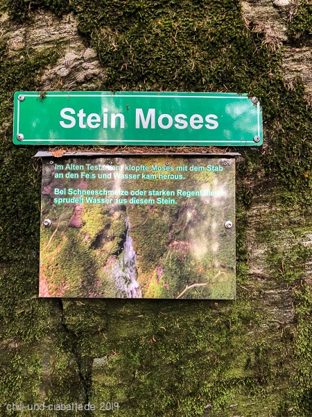 Stein Moses