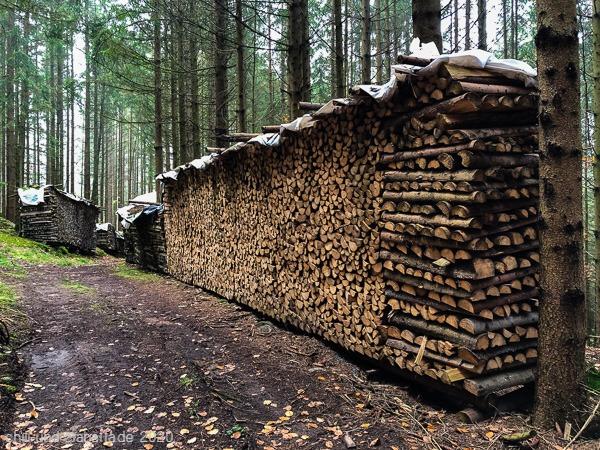Holzvorrat