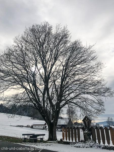 Baum mit Totenbrettern