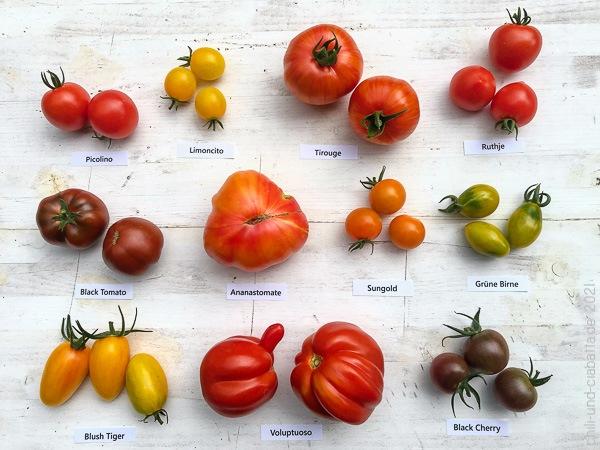 Tomatensorten 2021